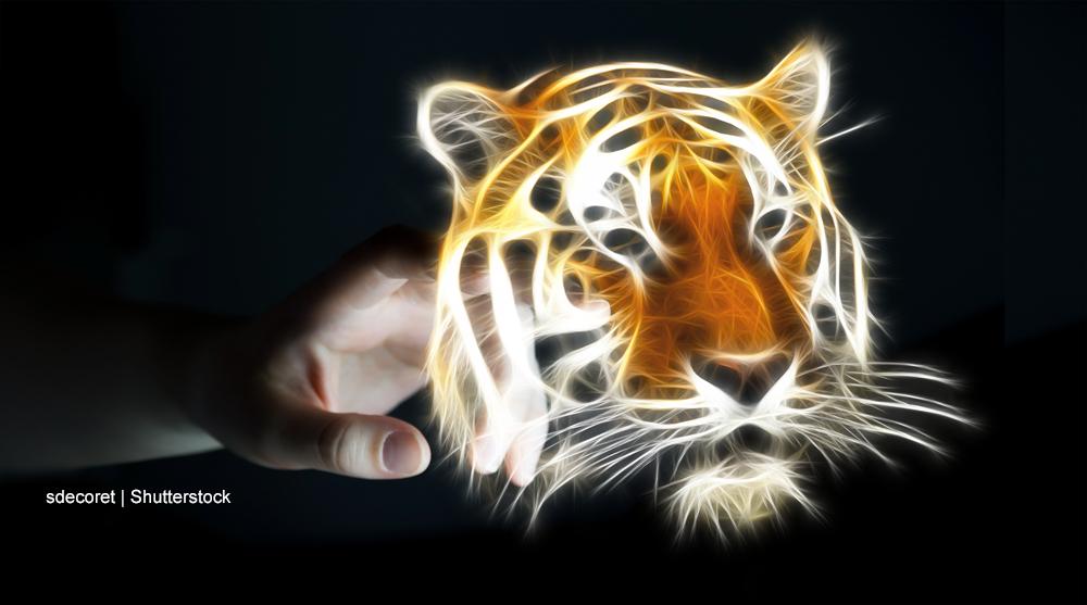 Vom zahmen Tiger und dem gefährlichen Schaf - ein Perspektivenwechsel